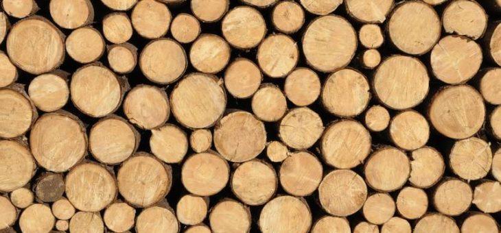 Štedilnik na drva za prijeten dom